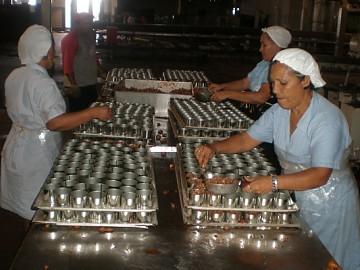 """http://www.facebook.com/pages/Anarquistas/378066755607147  Redacción  Como se recordará la Empresa de Producción Social (EPS) Conservas Alimenticias La Gaviota, ubicada en Cumaná, estado Sucre, fue estatizada el 01 de mayo de 2009. Desde ese día, ha sido una de las protagonistas de las propagandas del Estado venezolano sobre las supuestas bondades gubernamentales. Leamos lo que nos dice una pieza informativa de la Agencia Venezolana de Noticias: """"Los trabajadores de la Empresa de Producción Social (EPS) Conservas Alimenticias   La Gaviota en Cumaná, estado Sucre, elevaron la producción de sardinas a 10 toneladas por día para garantizar la distribución de este alimento rico en proteínas al pueblo oriental. Los actuales niveles de producción de la empresa responden a dos factores fundamentales: la dirección de la factoría por parte de los mismos trabajadores y las permanentes mejoras de las condiciones laborales (...) Las condiciones socioeconómicas de 276 trabajadores de la planta mejoraron, pues perciben salarios fijos, seguro médico, utilidades, vacaciones y oportunidades de estudio que antes no recibían. Asimismo, obtuvieron un incremento en más del 100% del bono de alimentación. """"Antes, si no había producción no cobrabas. No había un salario fijo, y mandaban al personal a su casa cuando no había producción"""", expresó Carlos Narváez, secretario general del sindicato de trabajadores de la planta"""".   La realidad, sin embargo, es muy diferente a la propaganda del delirio burocratizado. Recientemente los propios directivos sindicales de La Gaviota denunciaron a medios regionales varias violaciones a los derechos de los trabajadores en esta planta procesadora de alimentos. Según Carlos Narváez y Pedro Vásquez desde hace varios años están sin transporte debido a las complicaciones económicas en la que a su juicio los ha mantenido las diversas gestiones de Pescalba, sin embargo, desde agosto del 2012, tramitaron conforme a la cláusula 28 de su Convención Colectiva el pago"""
